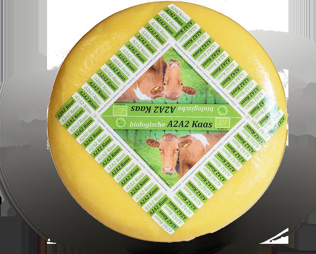 kazen_vegetarisch